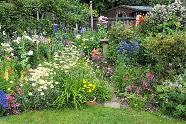 Photos of our Open Gardens weekend